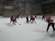 hokej-12