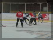 Hokej 2011