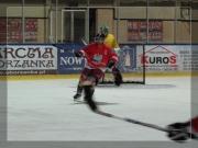 Hokej 2012