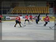 hokej-14