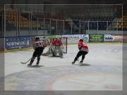 hokej-22
