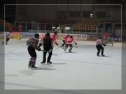 hokej-30