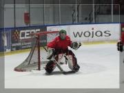hokej-40