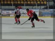 hokej-41