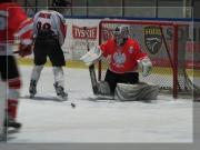 hokej-42