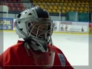 Hokej 2014