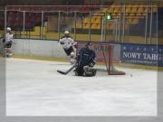 Hokej 2013