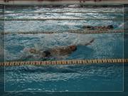 Pływanie 2011