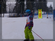 Slalom 2014