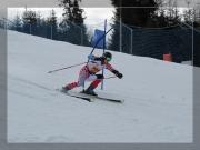 Slalom gigant 32