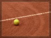 Tenis ziemny 2013